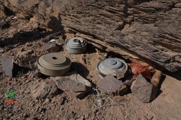مشروع مسام: نزعنا 140 ألف لغم حوثي وذخيرة غير منفجرة في اليمن