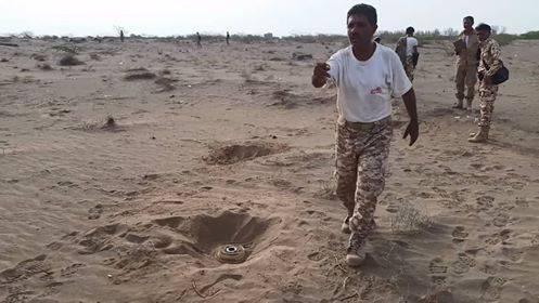 شاهد بالفيديو والصور.. اكتشاف وتفكيك أكبر حقل ألغام زرعته مليشيا الحوثي في مدينة الحديدة..!