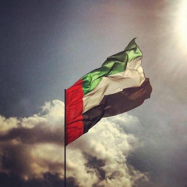 دولة الإمارات تدين الاعتداء الإرهابي الحوثي على حقل نفطي سعودي