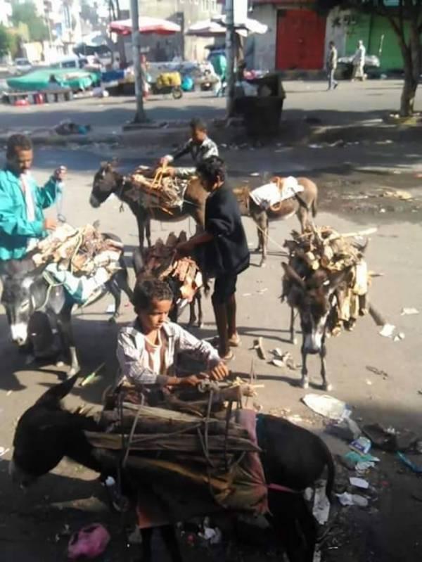 الحوثيون يعيدون اليمنيين في صنعاء لعهد الحطب