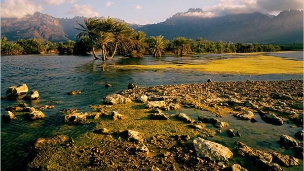 إعرف وطنك: الجزر اليمنية.. مقومات سياحية وطبيعة فريدة وتنوع حيوي