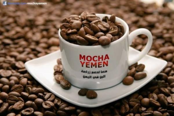 تعرف على قائمة أول «10» دول منتجة للقهوة و موقع اليمن منها.. تفاصيل